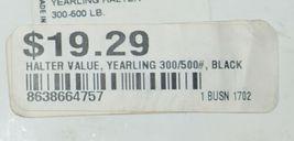 Valhoma 350QBK Black Yearling Horse Halter Three to Six Hundred Pounds image 6