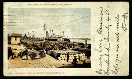 1903 New Orleans LA POSTCARD Levee Canal Street Detroit Photographic Co ... - $18.99