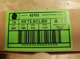 Torchier Lamp Bulbs 300 watt - $20.00