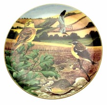 Tomorrow Is Too Late British Wildlife Plate Birds Ian Lewington Bird Plate - $35.84