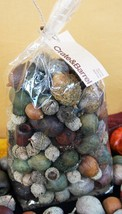 CRATE & BARREL BAG OF LARGE ACORNS –NIB– YOU'D BE SQUIRRELY TO PASS THIS... - $19.95