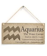 Meijiafei Aquarius The Water Carrier - Beautiful Spiritual Gift Astrolog... - $12.86