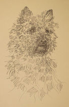 CAIRN TERRIER DOG ART LITHOGRAPH #41 Kline adds your dogs name free. BRE... - $49.95