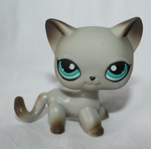 Littlest Pet Shop 391 Egyptian Cat  LPS Authentic Around the World - $48.00