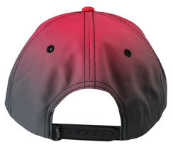Staple World Renown Pigeon Brand Men's Chromatic Snapback Hat NWT image 3