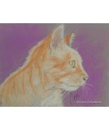 Cat Art Pastel Drawing Solomon - $85.00