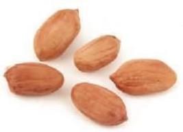 Peanuts Virginia Redskin Raw - 5 Lbs - $79.99