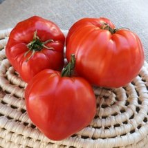 30 Seeds of Wes - Tomatoes Oxhearts - $15.84