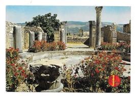 Morocco Volubilis Roman Vestiges Ancient City Ruins Archaeology Postcard... - $5.70