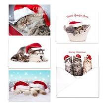 Christmas Cats Holiday Card Assortment Pack - Set of 25 cards - 5 of eac... - $17.30