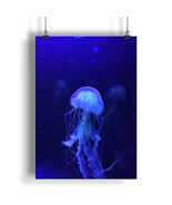 Beautiful Ocean Blue Jellyfish  A0 A1 A2 A3 A4 Satin Photo Poster a805h - $10.88+