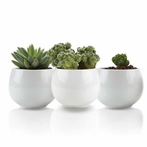 UFIG Pack of 3 Tiny White Ceramic Succulents Plants Pots Cactus Standing... - $13.48