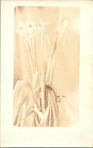 Vtg RPPC 1927-28 Narcisi Spray Botanico Fiore Pacchetto Kodak Velluto Verde - $37.88