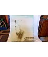 "White Horse with Beach Background Silkscreen Print Wall Art 14"" x 18"" - $47.52"