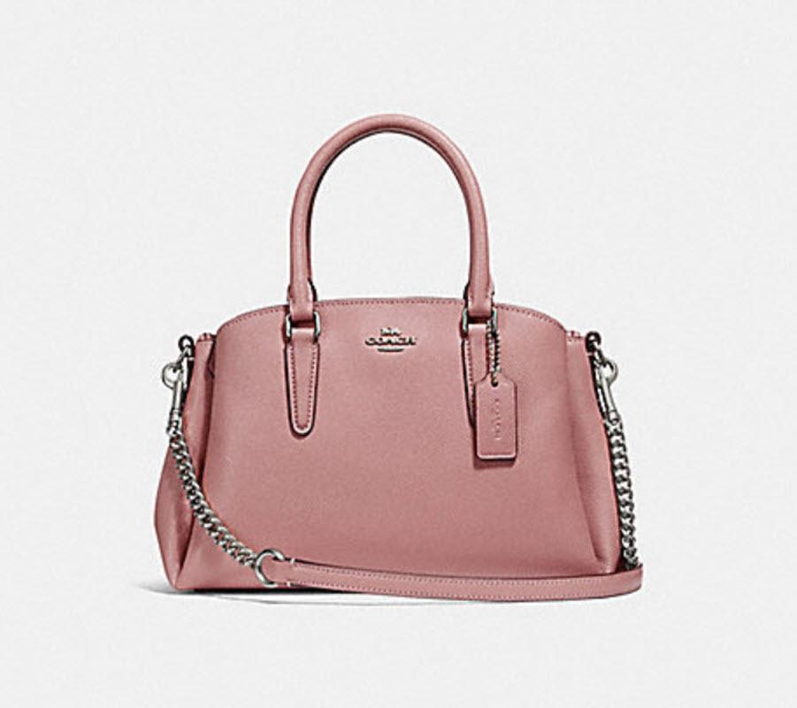 72e8c5d1d656 COACH F28977 MINI SAGE CARRYALL Satchel messenger Handbag purse pink NWT