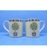 "Royal Doulton Carmina 3 5/8"" Lemon Tree Coffee Mugs Set Of 2 Mugs GUC - $18.62"