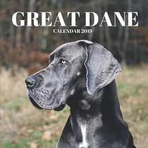 Great Dane Calendar 2019: Mini Wall Calendar Dog Photographs 12 Month Ca... - $12.58