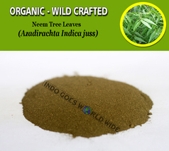 POWDER Neem Tree Leaves Azadirachta Indica Organic Wild Crafted Natural ... - $7.85+