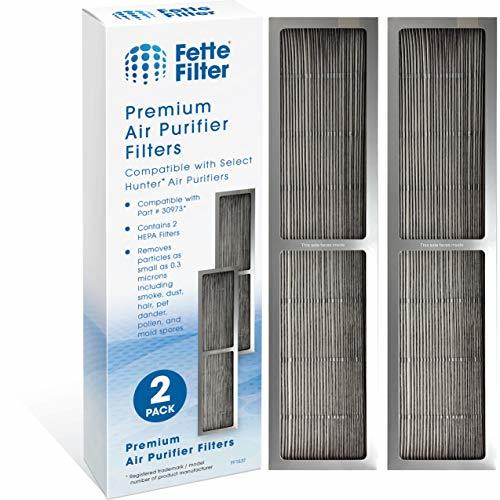 Fette Filter - Air Purifier HEPA Filter Compatible with Hunter 30973, 30405, 304