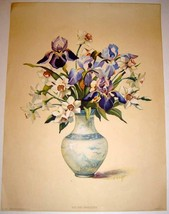 12x16 Vintage Iris & Narcissus Litho Print By L. Hart - $10.00