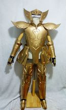 Saint Seiya: The Lost Canvas Aquarius Degel Cosplay Costume Armor Buy - $790.00