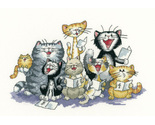 The choir cat s rule thumb155 crop