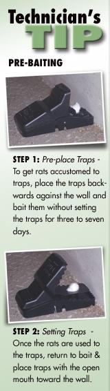 Easy Set Pro Rat Trap Trapper T Rex Rat Trap Sewer Roof Rat Trap 3 pack