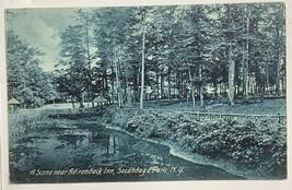 Old Souvenir Mail Card Postcard Scene Near Adirondack Inn, Sacandaga Par... - $19.55