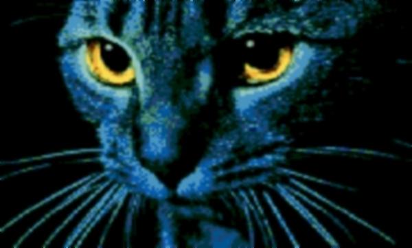 Latch Hook Rug Pattern Chart: BIG BLUE CAT   EMAIL2u   $5.75