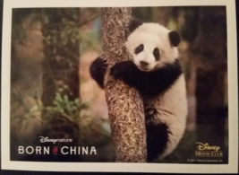 Born In China Panda Lithograph Disneynature Disney Movie Club Exclusive NEW - $29.99