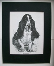 Basset Hound Closeup Dog Print Gladys Emerson Cook Bookplate 1962 11x14 ... - $24.74