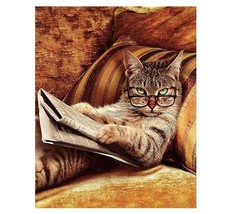 Paint By Numbers Kit Cat With Glasses Reading 40CMx50CM Canvas - $12.38