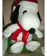 Snoopy -  Peanuts Snoopy Musical Pal - $12.95