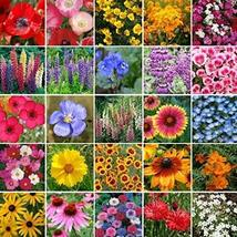 Non GMO Bulk Pacific Northwest Wildflower Seed Mix 25 Species of Wildflower Seed - $406.84