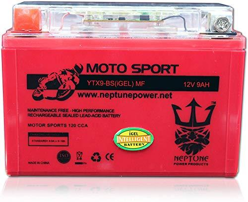Primary image for YTX9-BS High Performance Gel Battery for Suzuki DR650SE (CN) 96-97 by Neptune