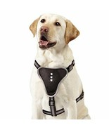 Comfortable Illuminating LED Harness for Pets, X-Large, Black - CLOSEOUT ! - $24.64