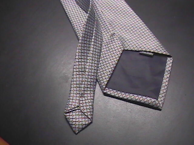 Rene Chagal Neck Tie Hand Made Silk in Silver