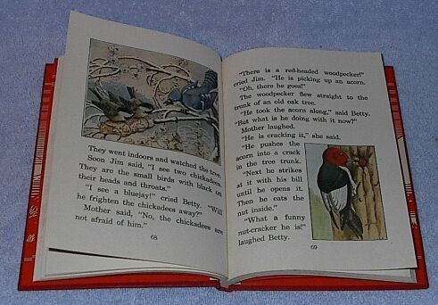 Science Stories, Children's 1935 Vintage School Book, Grade 2