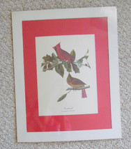 Vintage wildlife/ animal poster print,  professionally printed  from an ... - $14.99