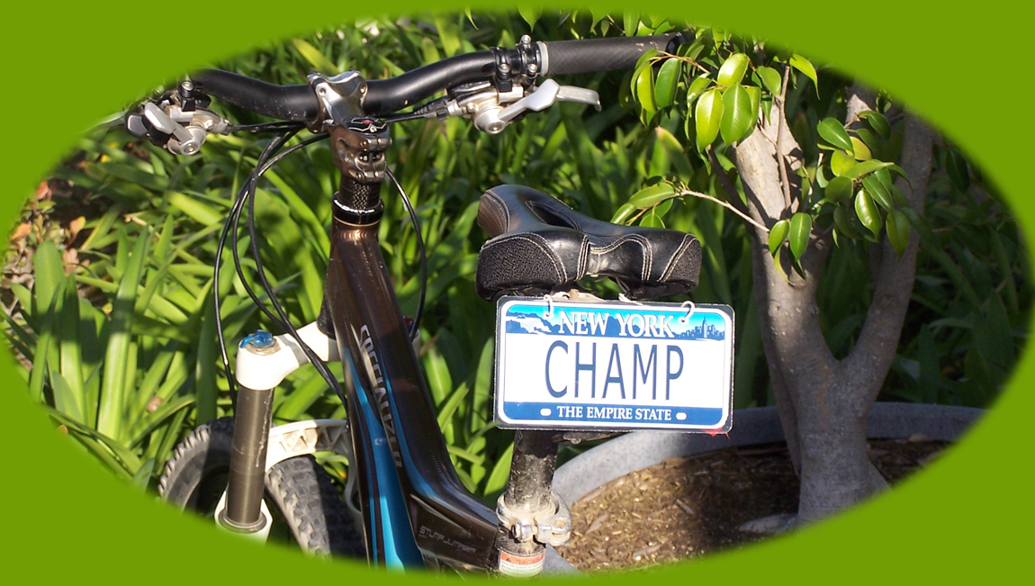 Personalized state tandem bicycle license plate