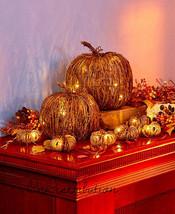 Lighted Grapevine Pumpkin Set LED Fall Autumn Harvest Decor Rattan & Met... - $56.59