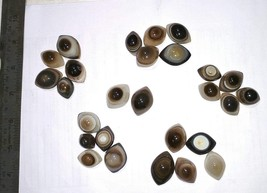 Beautiful Agate Natural Eye 27 Pieces Two Color in Eyes Very Clear  - $56.00