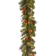 National Tree 9 Foot by 10 Inch Crestwood Spruce Garland with Silver Bristle, Co image 5