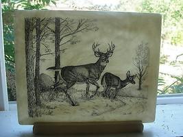 Hand Cast marble etching, John Wills, deer in w... - $35.25