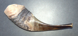 Judaica Shofar Kosher Ram's Horn High Quality Half Polished Natural 9""