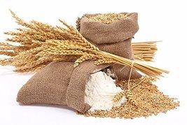 Durum Whole Wheat Flour Stone GROUND- 5.5lb - $79.99