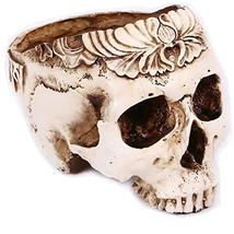 Halloween Decor Resin Skull Shaped Head Flower Pot Planter Container Dec... - $26.72