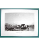 COWS Cattle in Evening Essex Thames River - SUPERB 1850s Antique Print - $16.84
