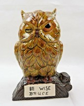 Be Wise Bruce vintage polychrome porcelain owl coin bank - $33.00
