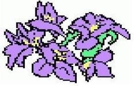 Iris1pat thumb200